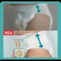 Πάνες Pampers Active Baby Monthly Box Νο4 (9-14kg) 180τεμ
