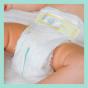 Πάνες Pampers Premium Care Monthly Pack Νο3 (6-10kg) 204τεμ